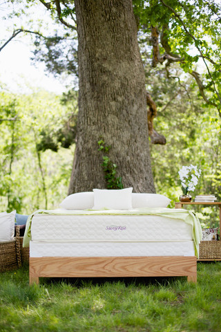 serenity latex mattress savvy rest outdoor vertical c7c02f0d 6341 4815 8665 66622f47d3bc large