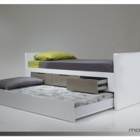 jack and jill bed mobital.jpg