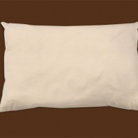 organic cotton pillow naturepedic.jpeg