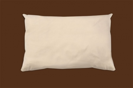 organic cotton pillow naturepedic.jpeg