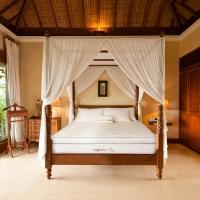 organicpedic terra mattress bedroom omi.jpeg